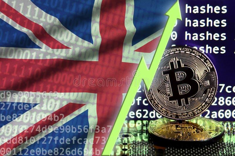 Drapeau de la Grande-Bretagne et flèche verte en hausse sur l'écran de extraction de bitcoin et deux bitcoins d'or physiques illustration libre de droits