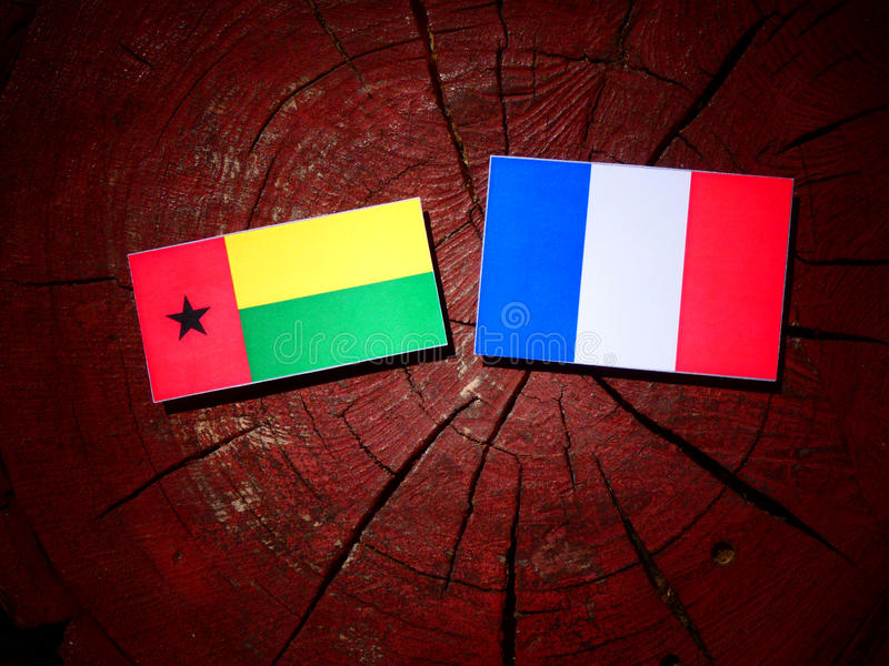 Drapeau de la Guinée-Bissau avec le drapeau français sur un tronçon d'arbre d'isolement image stock