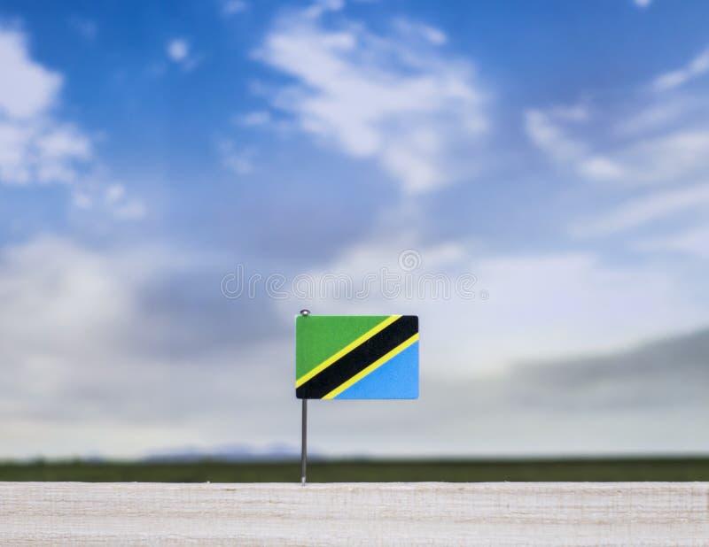 Drapeau de la Tanzanie avec le vaste pré et le ciel bleu derrière lui images libres de droits