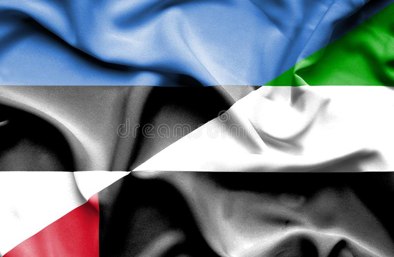Drapeau de ondulation des Emirats Arabes Unis et de l'Estonie image libre de droits