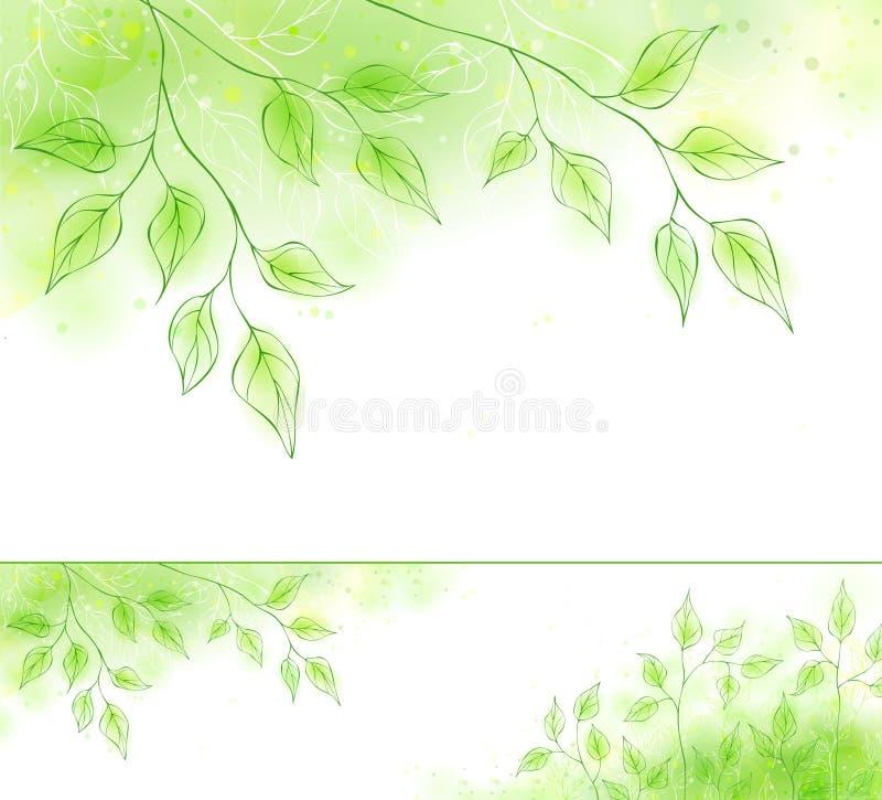Drapeau de source de vecteur avec le feuillage vert illustration stock