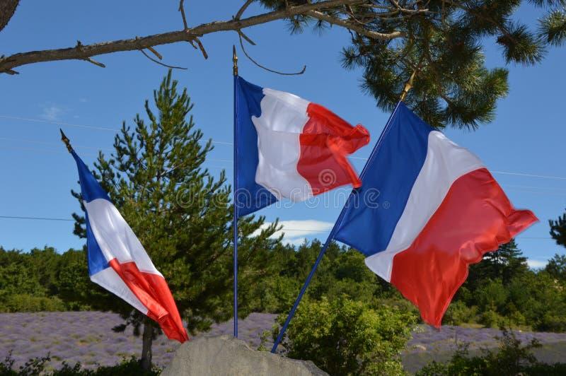 Drapeau de trois Français dans le vent photographie stock