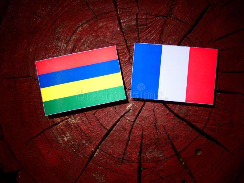 Drapeau des Îles Maurice avec le drapeau français sur un tronçon d'arbre d'isolement photos stock