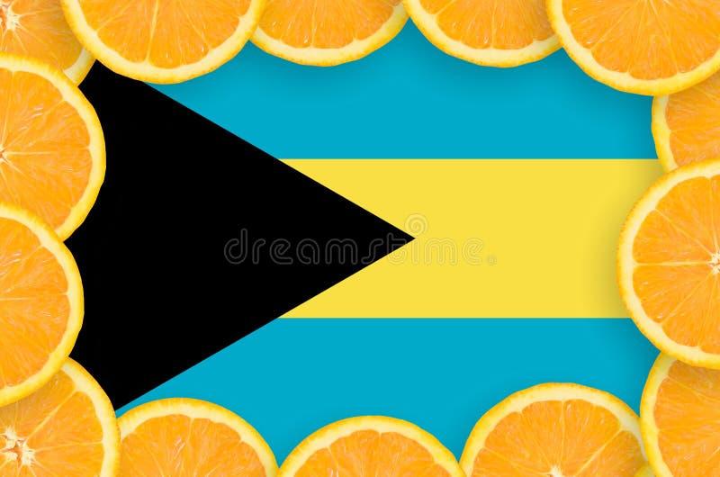 Drapeau des Bahamas dans le cadre frais de tranches d'agrumes illustration de vecteur