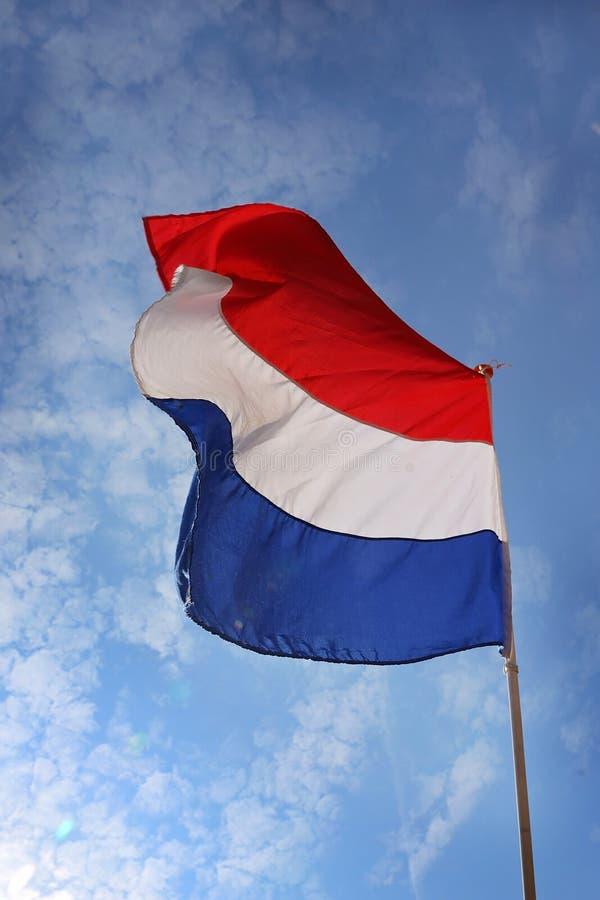 Drapeau des Pays-Bas photographie stock libre de droits