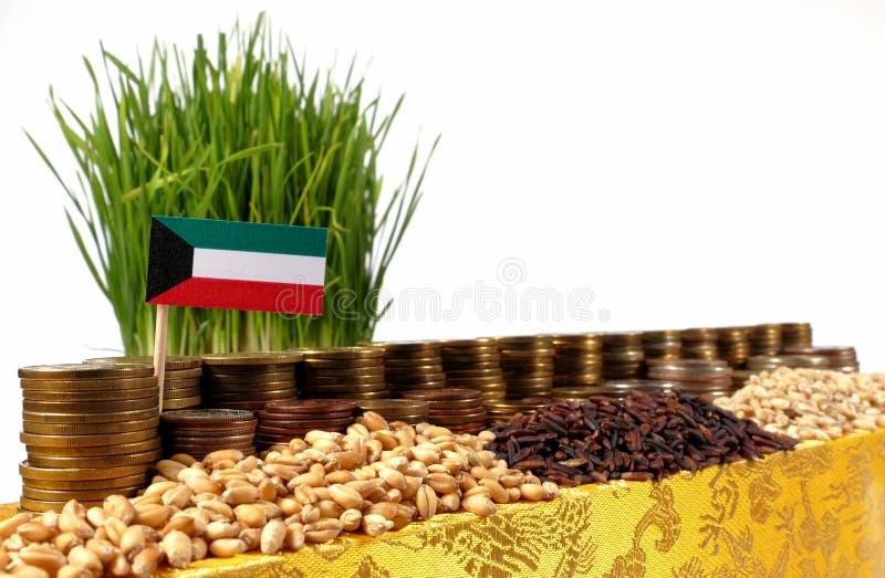 Drapeau du Kowéit ondulant avec la pile de pièces de monnaie d'argent et les piles du blé photos libres de droits