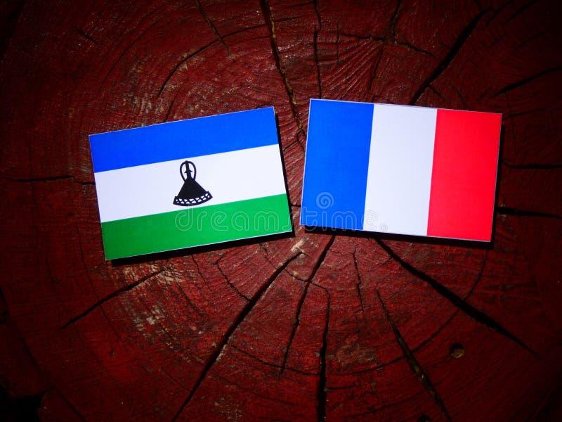 Drapeau du Lesotho avec le drapeau français sur un tronçon d'arbre d'isolement image libre de droits