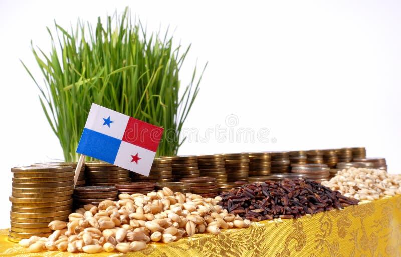 Drapeau du Panama ondulant avec la pile de pièces de monnaie d'argent et les piles du blé photo libre de droits