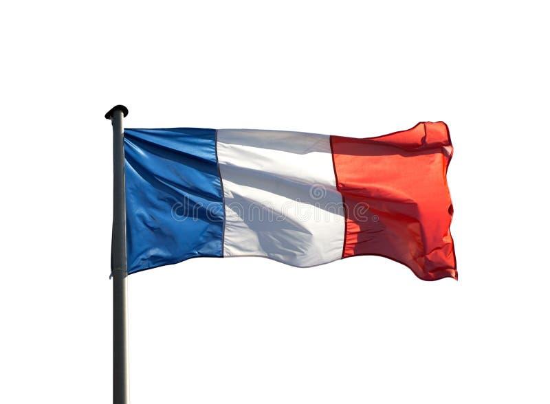 Drapeau français dans le vent sur le fond blanc photographie stock libre de droits