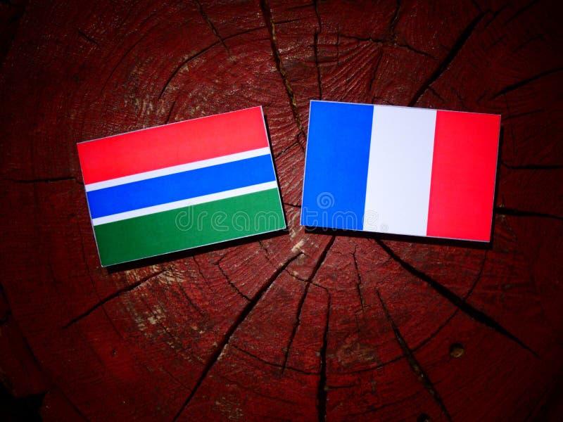 Drapeau gambien avec le drapeau français sur un tronçon d'arbre d'isolement photographie stock