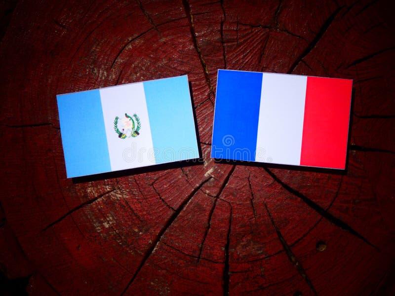 Drapeau guatémaltèque avec le drapeau français sur un tronçon d'arbre d'isolement image libre de droits