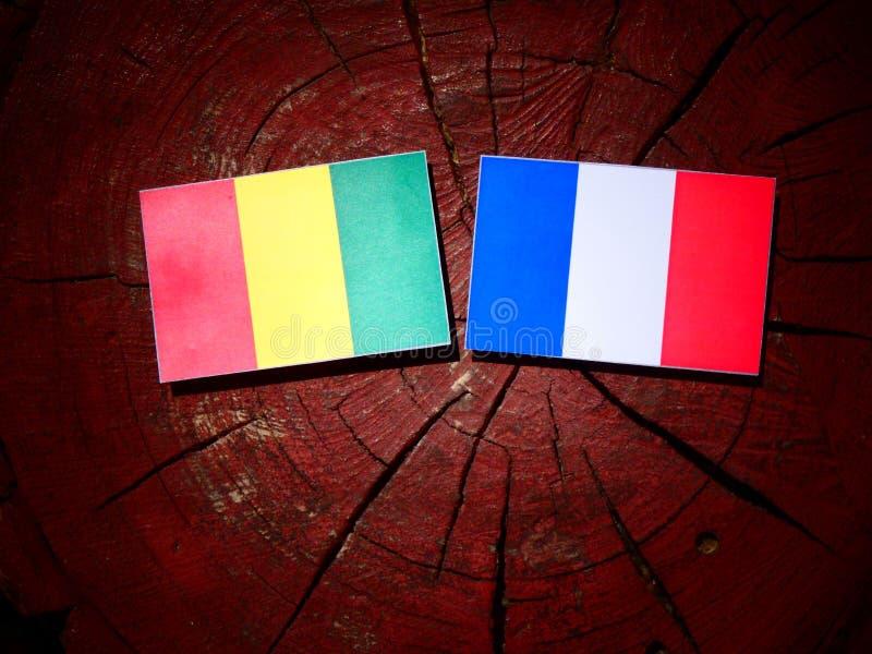 Drapeau guinéen avec le drapeau français sur un tronçon d'arbre d'isolement photographie stock