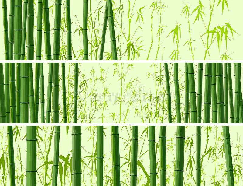 Drapeau horizontal avec beaucoup de bambous. illustration de vecteur