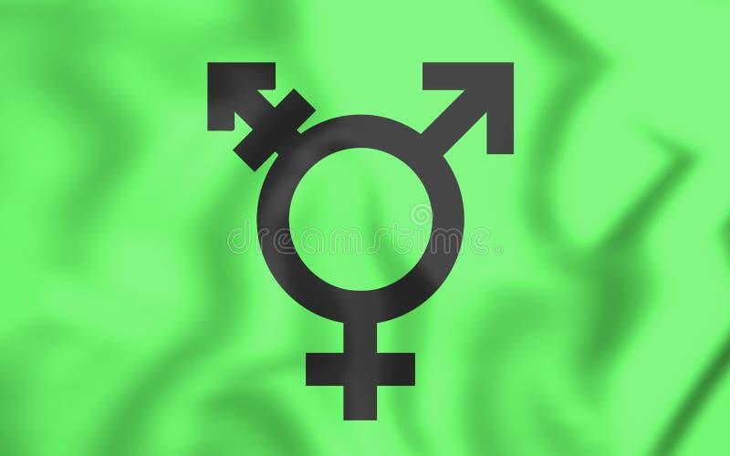 Drapeau israélien de transsexuel illustration stock