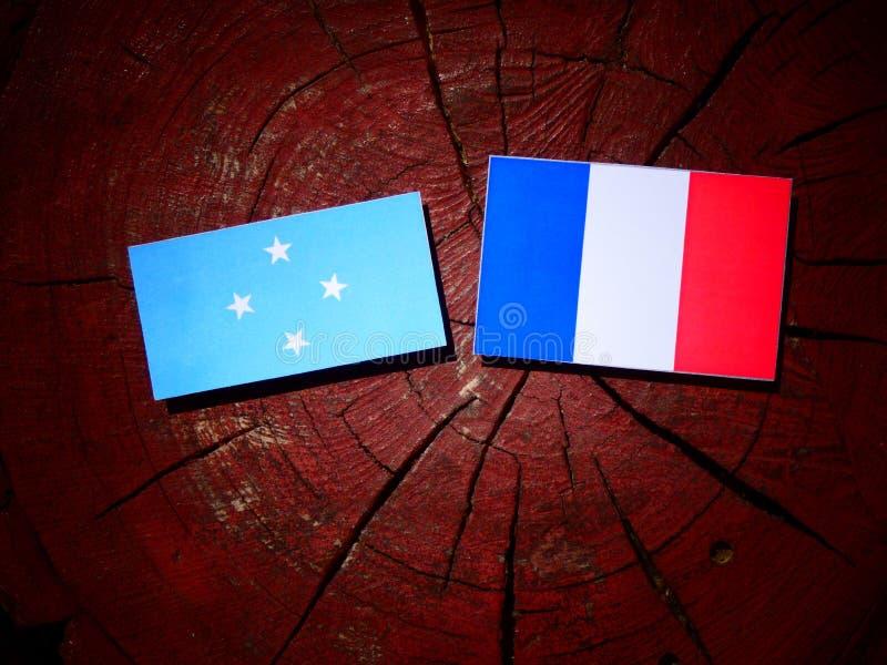 Drapeau micronésien avec le drapeau français sur un tronçon d'arbre d'isolement photos libres de droits