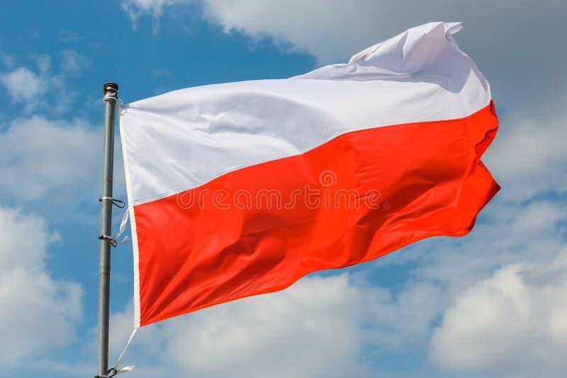 Drapeau polonais sur le fond de ciel bleu images libres de droits