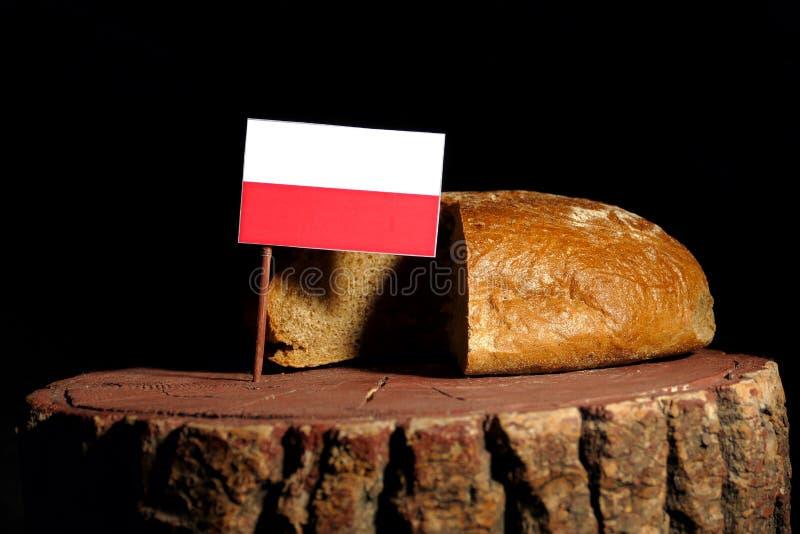 Drapeau polonais sur un tronçon avec du pain images libres de droits