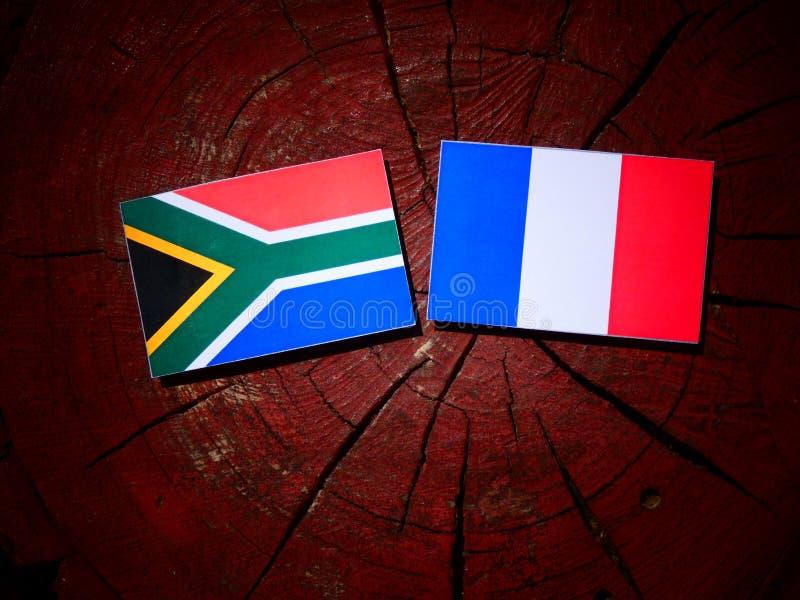 Drapeau sud-africain avec le drapeau français sur un tronçon d'arbre d'isolement photos libres de droits