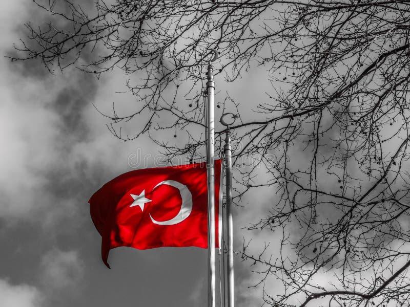 Drapeau turc image stock