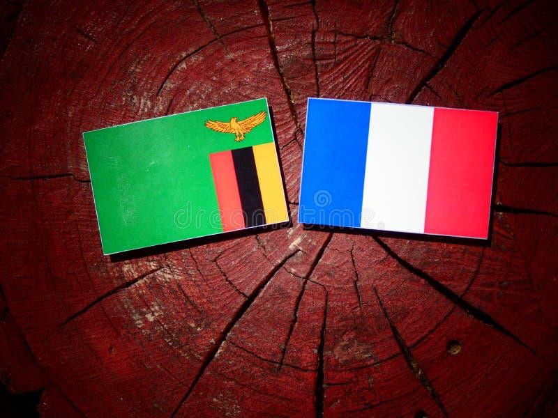 Drapeau zambien avec le drapeau français sur un tronçon d'arbre d'isolement images stock