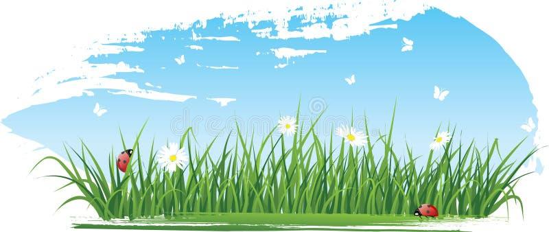 Drapeaux d'herbe d'été illustration de vecteur