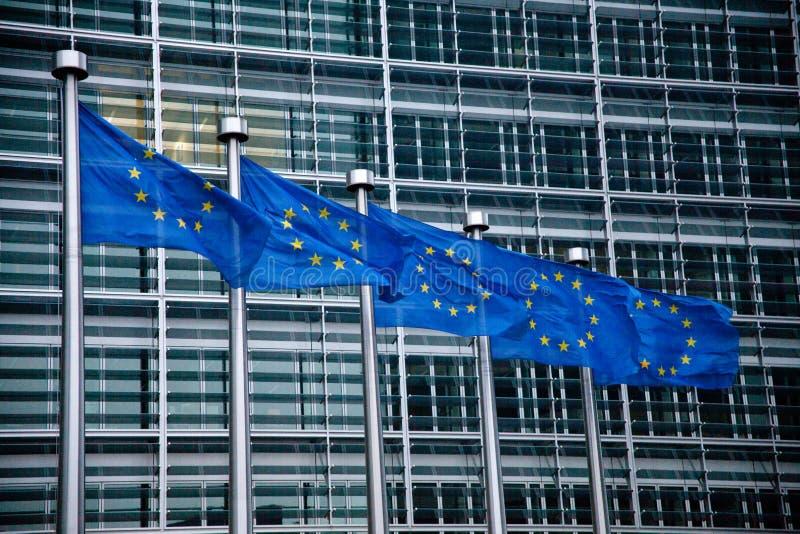 Drapeaux d'Union européenne photographie stock libre de droits