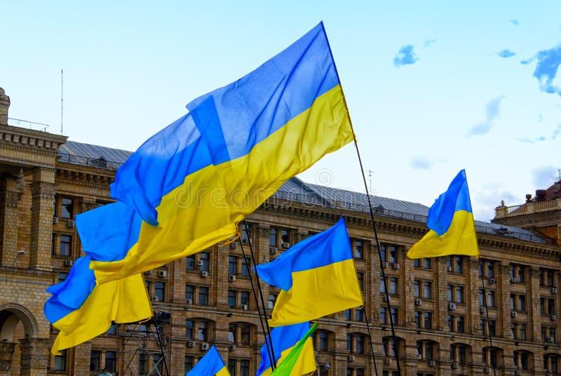 Drapeaux de l'Ukraine photographie stock libre de droits