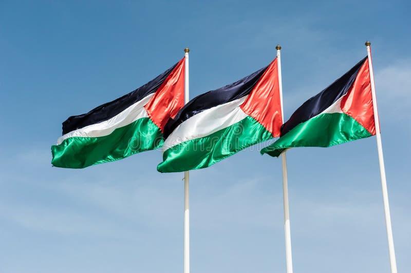 Drapeaux de la Palestine photographie stock