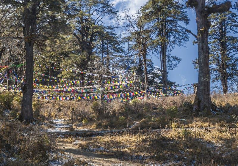 Drapeaux tibétains Lung Ta de bouddhiste de prière traditionnelle sur le passage de Dochula au Bhutan, Himalaya photographie stock libre de droits