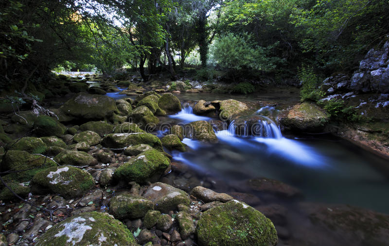 Drapeert onderaan het rotsachtige rivierbed van de rivier van La Siagnole stock foto's
