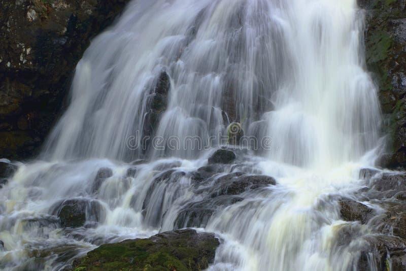 Draperend Water bij de Daling van de Zittingsdame, Geestig Lagune Regionaal Park, het Eiland van Vancouver royalty-vrije stock foto's