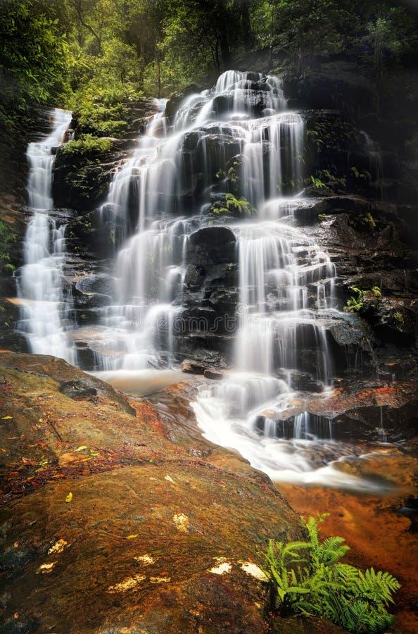 Draperende Sylvia Falls-waterval in de Blauwe Bergen royalty-vrije stock afbeelding