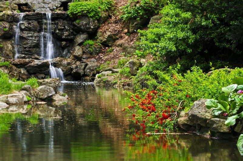 Draperende waterval en vijver stock afbeeldingen