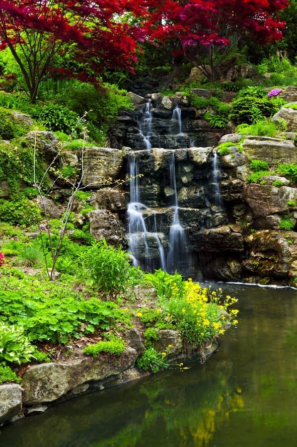 Draperende waterval en vijver royalty-vrije stock foto's