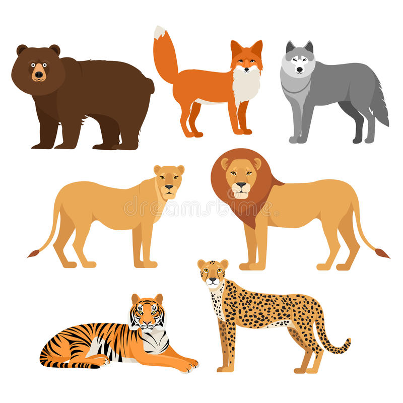 Drapieżczy zwierzęta ustawiają wilka niedźwiadkowego lisa lwa tygrysiego geparda odizolowywającego royalty ilustracja