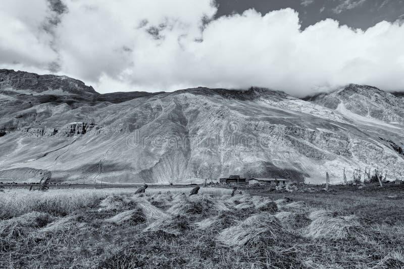 Drass by, Kargil, Ladakh, Jammu and Kashmir, Indien royaltyfri foto