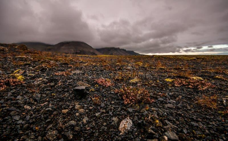 Drastische isländische Landschaft mit Fokus auf dem vulkanischen Lava fie stockbild