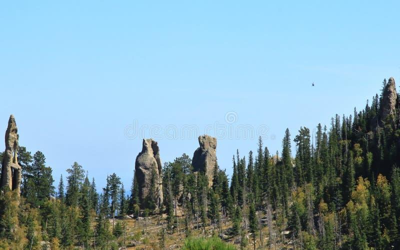 Drastischer Gebirgsrücken auf kleinen Teufeln ragen Spur im Nadel-Abschnitt von Custer State Park, South Dakota hoch stockfotos