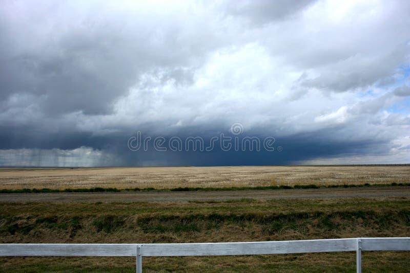 Drastischer Grasland-Himmel stockbild