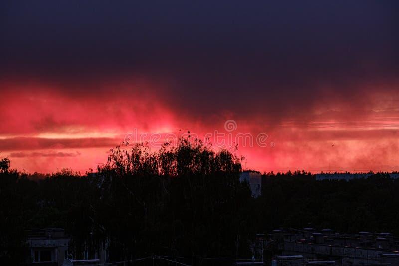 drastischer roter Wolkennebel über Bäumen auf Sonnenuntergang stockfoto