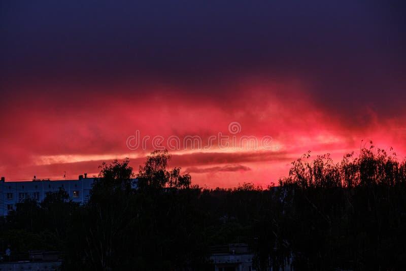 drastischer roter Wolkennebel über Bäumen auf Sonnenuntergang lizenzfreie stockbilder