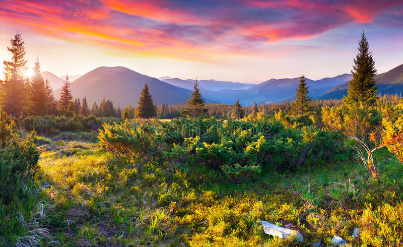 Drastischer Sommersonnenuntergang in den Karpatenbergen lizenzfreies stockbild
