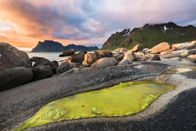 Drastischer Sonnenuntergang über Utakleiv-Strand auf Lofoten-Inseln, Norwegen stockbilder