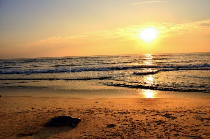 Drastischer tropischer Glättungssonnenuntergang, Asien stockbild