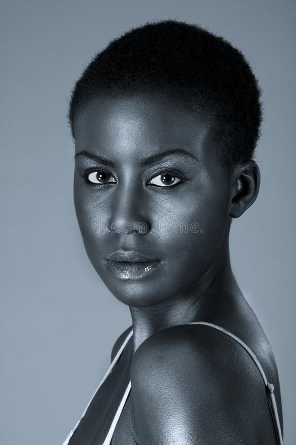 Drastisches Portrait der jungen Afroamerikanerfrau stockbild