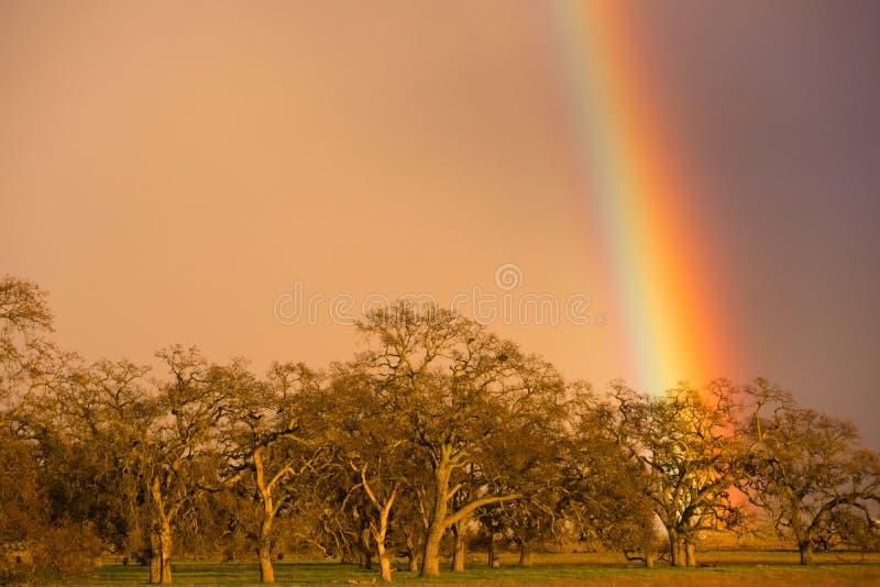 Drastisches Regenbogen-Kalifornien-Tal-Landschaftsregen-Fallen stockfoto