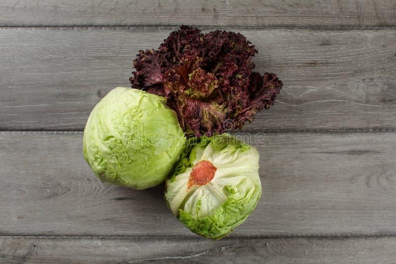 Draufsicht über Eisbergsalat und Lollo Rosso (lettuc Blatt der roten Koralle lizenzfreies stockbild