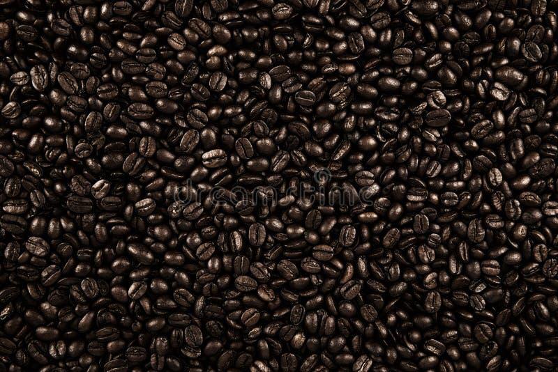 Draufsicht über Hintergrundbeschaffenheit von dunklen Kaffeebohnen lizenzfreie stockfotos