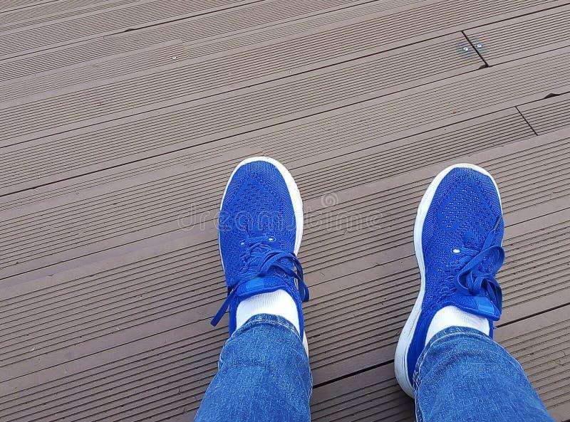Draufsicht der blauen Turnschuhschuhstellung auf Bretterboden stockfotos