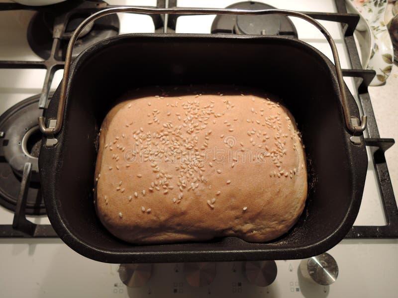 Draufsicht der Form eines Brotbackautomaten und der Kruste des frischen gebackenen Brotes mit Samen des indischen Sesams lizenzfreies stockbild